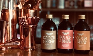 From Home Brewed Booch to Award Winning Kombucha: The Story of Booch & Brew